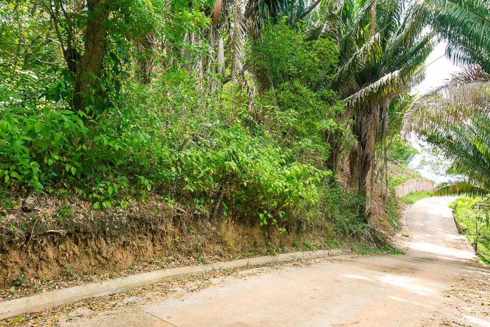 Roatan-Honduras-property-roatanlife16-265-3.jpg