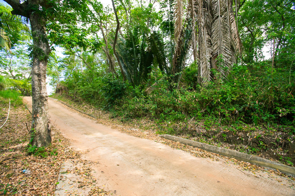 Roatan-Honduras-property-roatanlife16-265-7.jpg