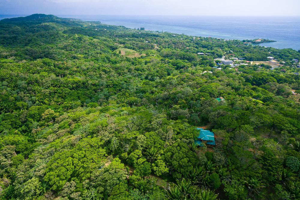 Roatan-Honduras-property-roatanlife16-265-8.jpg