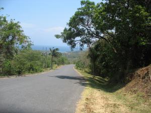 Roatan-Honduras-property-roatanlife17-210-1.jpg