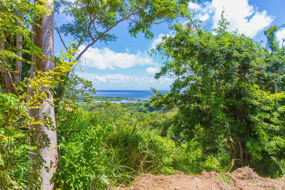Roatan-Honduras-property-roatanlife18-635-11.jpg