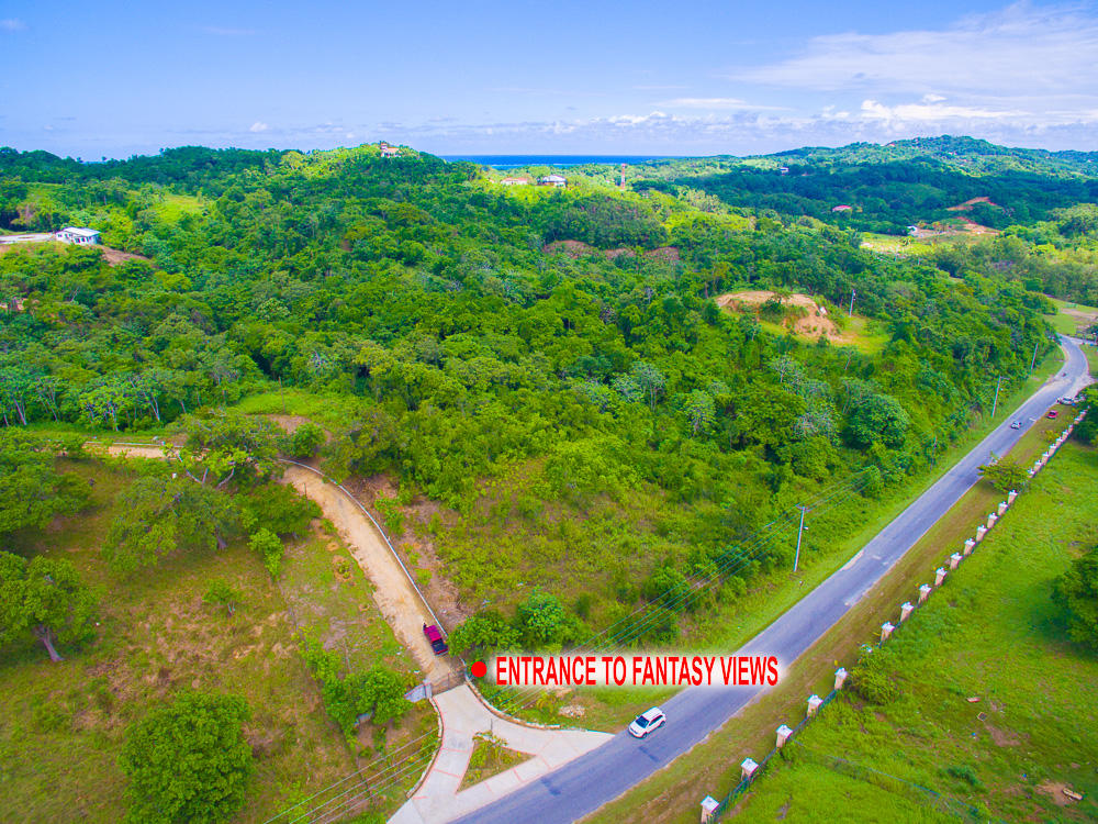 Roatan-Honduras-property-roatanlife18-635-2.jpg