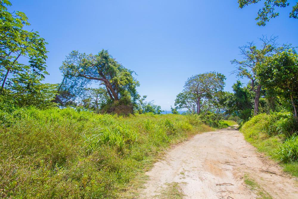 Roatan-Honduras-property-roatanlife18-635.jpg
