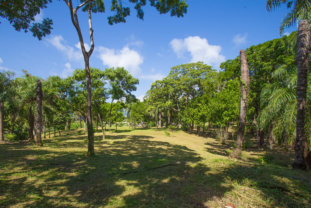 Roatan-Honduras-property-roatanlife16-526-2.jpg