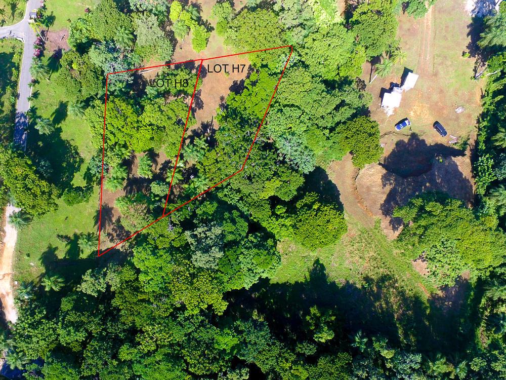 Roatan-Honduras-property-roatanlife16-526-3.jpg
