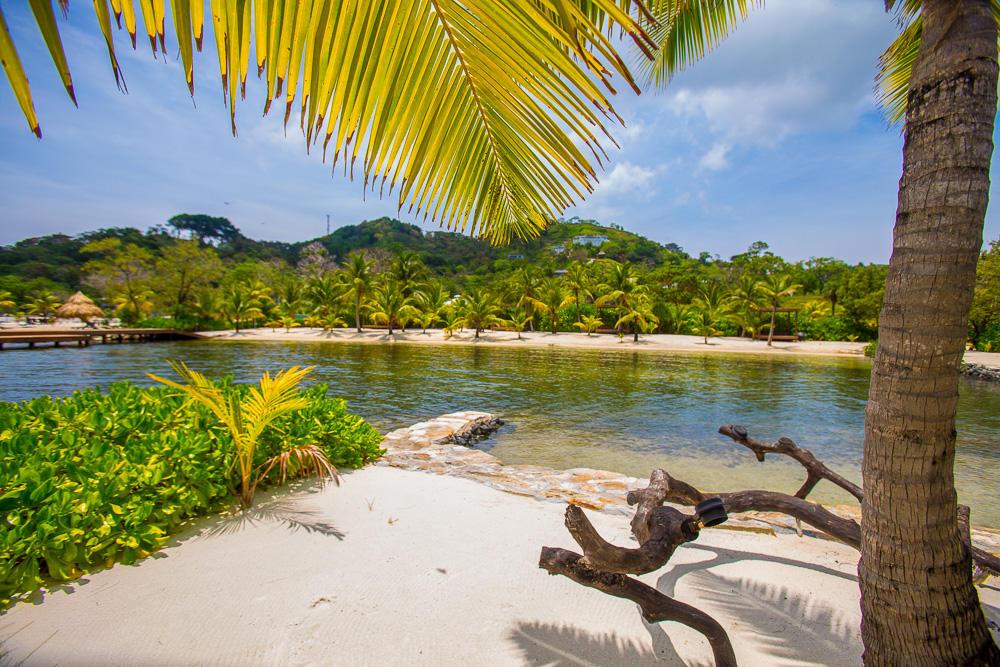 Roatan-Honduras-property-roatanlife17-351-10.jpg