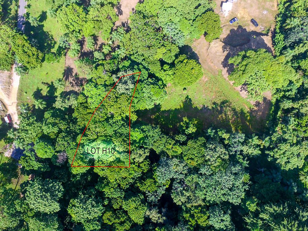 Roatan-Honduras-property-roatanlife17-558-1.jpg