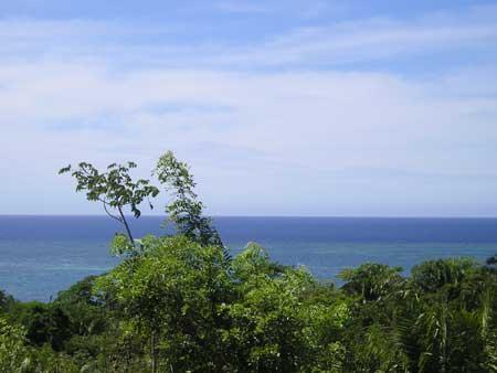 Roatan-Honduras-property-roatanlife16-536.jpg