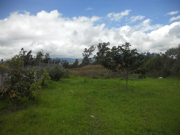 Cuicocha-Ecuador-property-RS1900242-1.jpg
