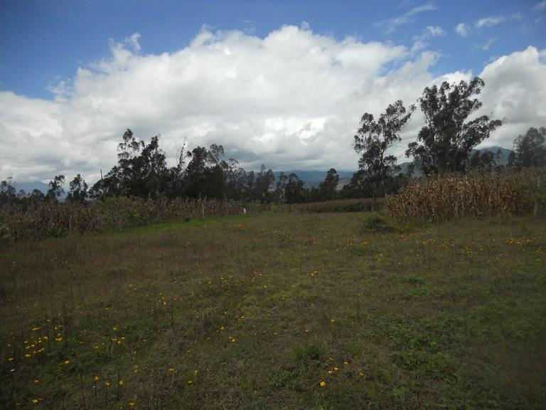 Cuicocha-Ecuador-property-RS1900242-3.jpg