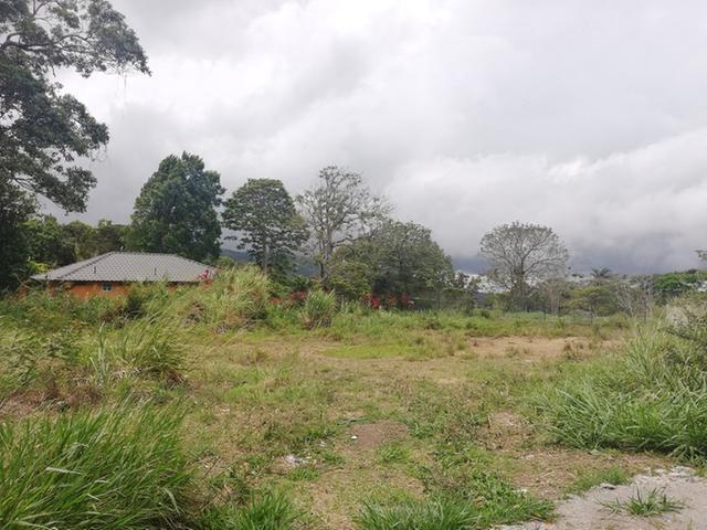 Boquete-Panama-property-panamarealtor11790-5.jpg