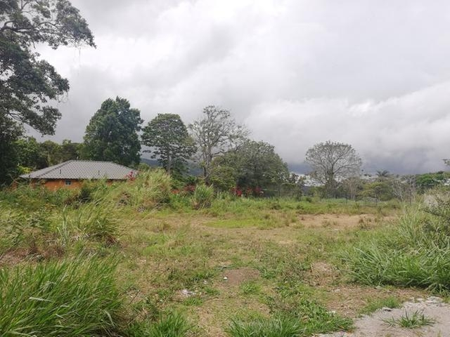 Boquete-Panama-property-panamarealtor11790.jpg
