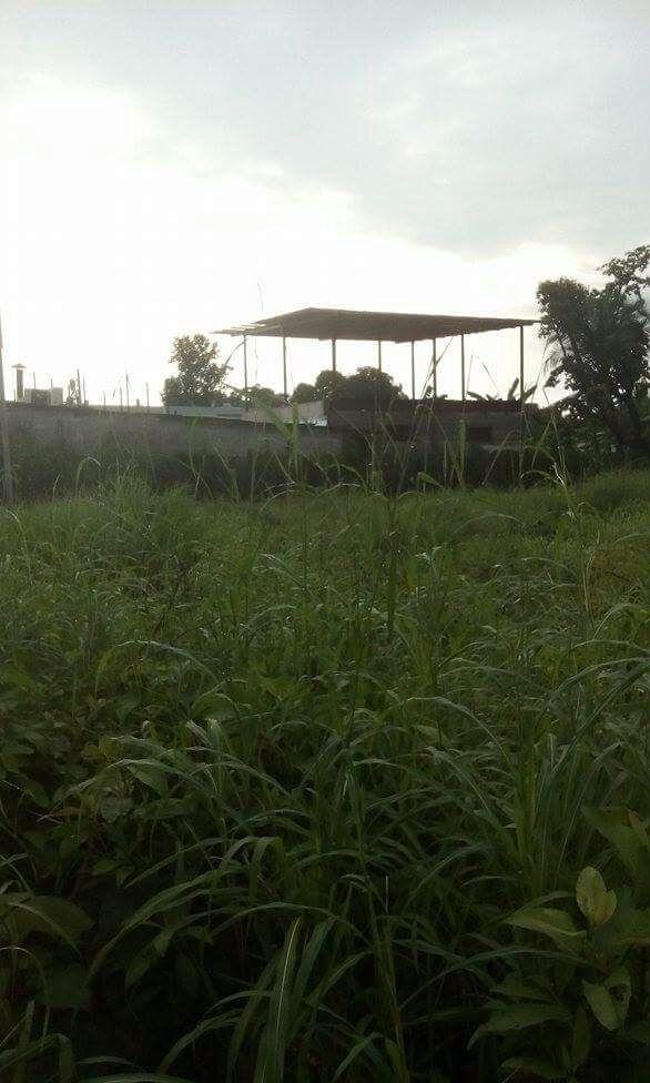 David-Panama-property-panamarealtor11822.jpg