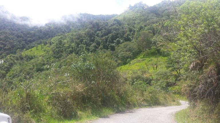 Intag-Ecuador-property-LL1900071-1.jpg