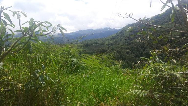 Intag-Ecuador-property-LL1900071-5.jpg