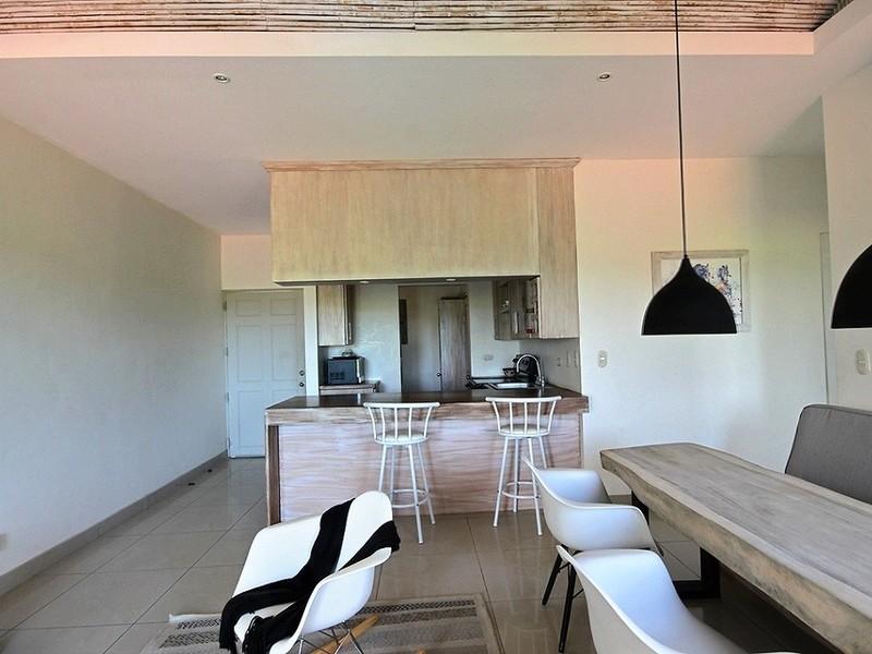Tamarindo-Costa-Rica-property-dominicalrealty10458-5.jpg