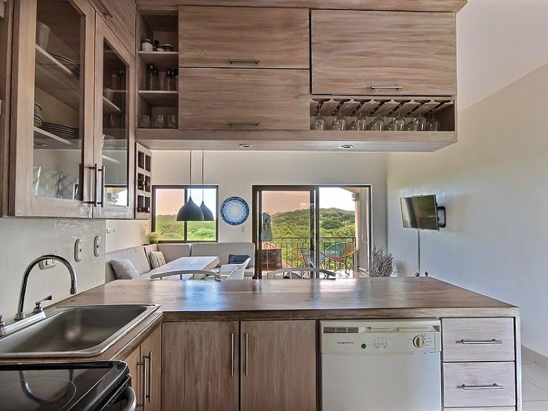 Tamarindo-Costa-Rica-property-dominicalrealty10458-7.jpg