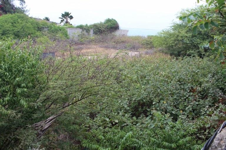 Ballenita-Ecuador-property-LL1900080-7.jpg