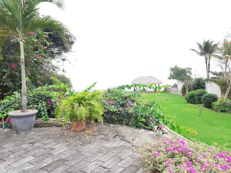 rs1900374_img-8_large
