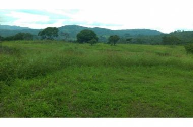 Chame Panama - Land and House for Sale in Chame- 4230