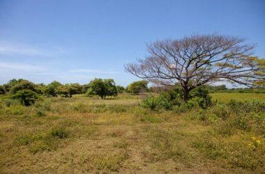 Aposentillo Nicaragua - Santa Maria 11 acre lot (80 meters from beach)