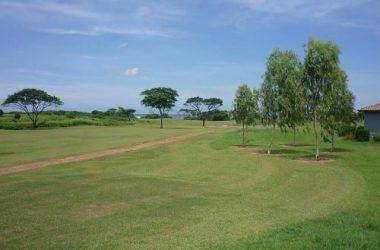 Aposentillo Nicaragua - SOLD – Gran Pacifica – Lot B-90