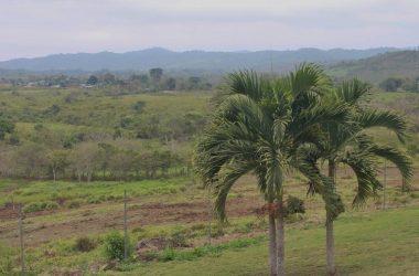 Olón Ecuador - Olon-San Vicente de Loja-Spectacular: Peace and Tranquility 10 Minutes From Downtown Olon