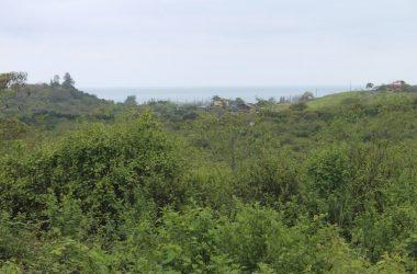 Olón Ecuador - Olon – Fincas Kansia-Ocean View Estate Lots: Spectacular Estate Lots Starting at 3727m2 up to 10,029m2. Breathtaking Views of the Pacific Ocean