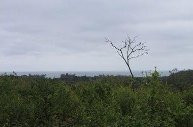 Olón Ecuador - Fincas Kansia: Overlooking Olon – Reserve your lot Today. Excellent Builder Waiting to Build you Dream Home.
