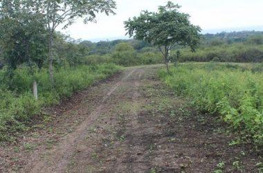 Olón Ecuador - Fincas Kansia: Mountain and Near the Coast Home Construction Site For Sale in Olón