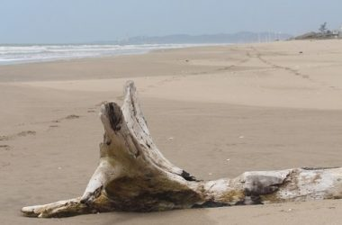 Playas Ecuador - 7000m2 Ocean Front Project Ready Land.- Not many of these left with this Prime Ocean Frontage.