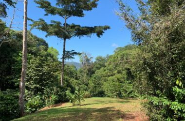 Dominical Costa Rica - 12.12 ACRES – 3 Building Sites With A Creek And Municipal Water!!!!