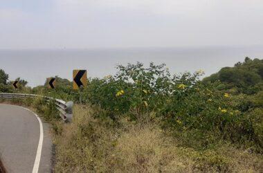 La Rinconada Ecuador - La Rinconada -Private and Secure 2439m2: Prime Ocean View Parcel in La Rinconada. Access to Private Beach