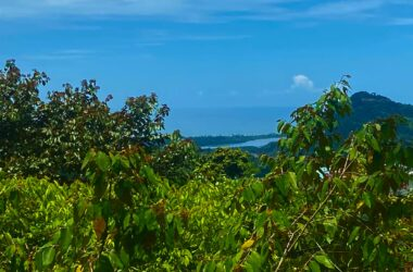 OJOCHAL Costa Rica - 1.6 ACRES – Ocean And Mountain View Property In Gated Community With 2 Building Sites!!!