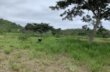 Olón Ecuador - Countryside and Near the Coast Home Construction Site For Sale in Olón