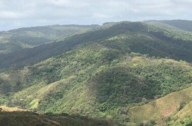 Los Pozos Panama - PROPERTY FOR SALE IN LA ONDA, LA PITALOZA, LOS POZOS, HERRERA PROVINCE. 130.965 ACRES (53 HA) OF LAND.