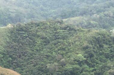 Los Pozos Panama - PROPERTY FOR SALE IN LA ONDA, LA PITALOZA, LOS POZOS, HERRERA PROVINCE. 81.544 ACRES (33 HA) OF LAND.